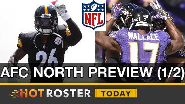 2017 Fantasy Football: AFC North Preview | HotRoster Today